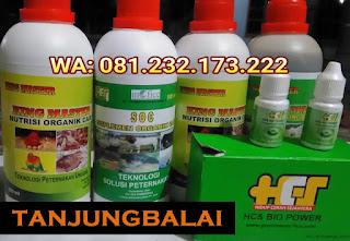 Jual SOC HCS, KINGMASTER, BIOPOWER Siap Kirim Tanjungbalai