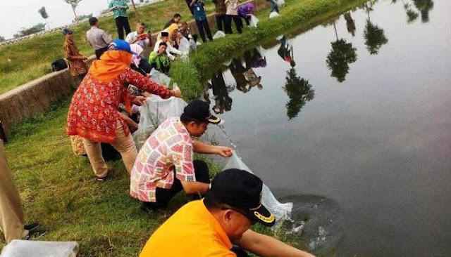 Tebar Nila di Kampung Bintaro