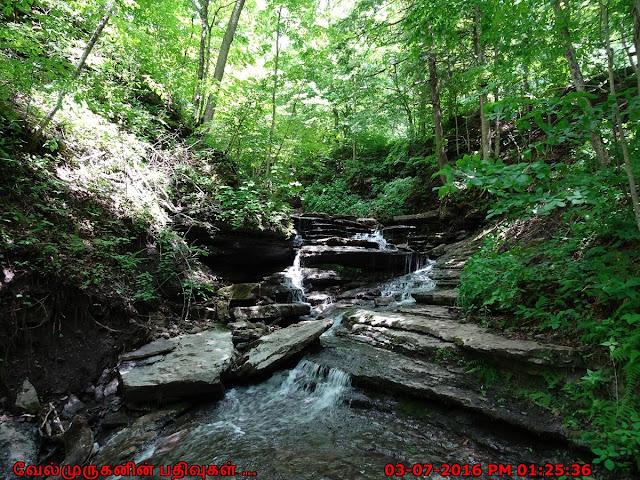 Pixley Falls State Park New York