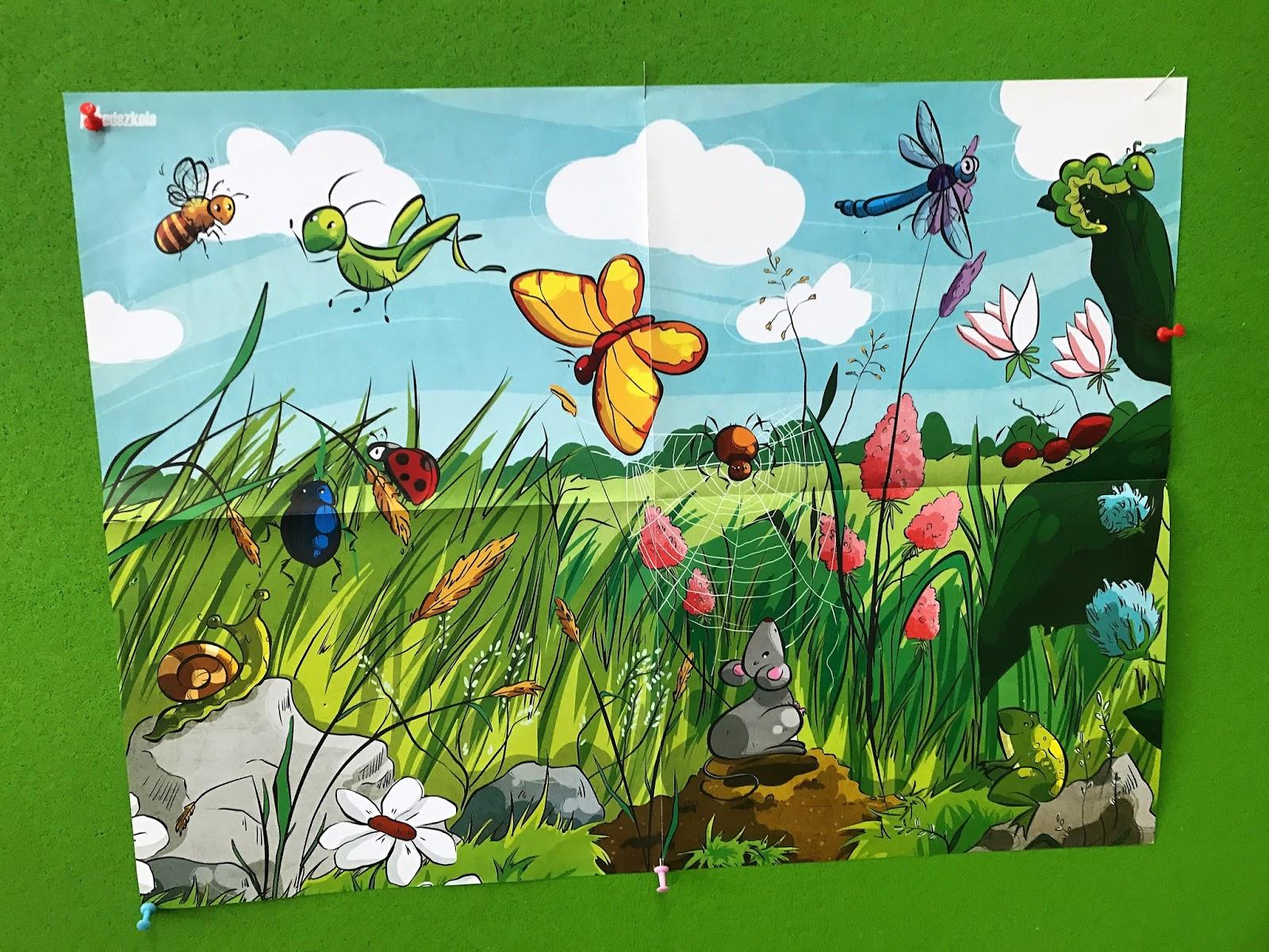 Kolorowe motyle na zielonej łące''- zajęcia otwarte dla rodziców ...