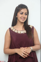 Nikki Galrani in a Brown Shining Sleeveless Gown at Nakshatram music launch ~  Exclusive 024.JPG