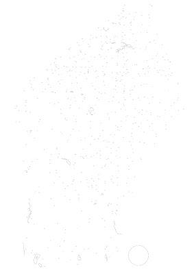 Exemplo de vetorização de plantas projetos e desenhos técnicos