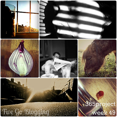 Five Go Blogging 365Project week 49