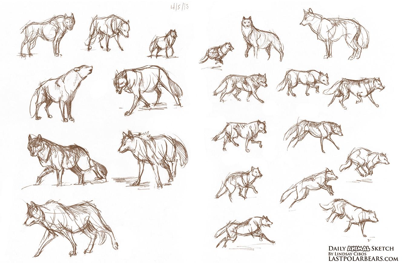 Bio sketch of