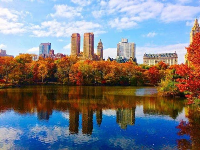 Nature: New York's Central Park in the Automn
