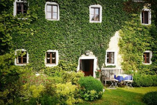 home, architecture, family, rush, garden, ivy, old, green, nature, rest,