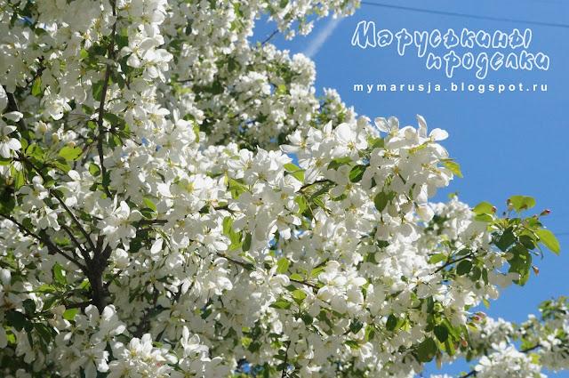 цветущая ветка яблони из фоамирана