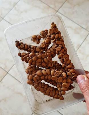 jual kopi luwak
