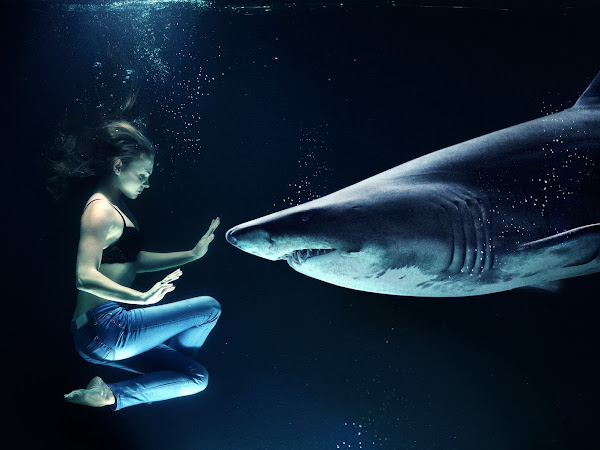 why I want to learn Freediving