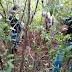 Corpo é encontrado em mata na zona norte de Londrina