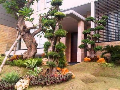 Jasa Pembuatan Taman di Jakarta Pusat