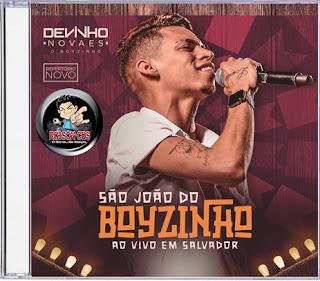 DEVINHO NOVAES - AO VIVO EM SSA  #SÃOJOÃODOBOYZINHO
