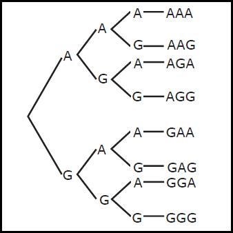 Cara menentukan ruang sampel suatu kejadian dari gambar di atas maka untuk pelemparan tiga uang koin sekaligus dapat ditentukan ruang sampelnya yaitu s aaa aag aga agg gaa gag gga ccuart Image collections