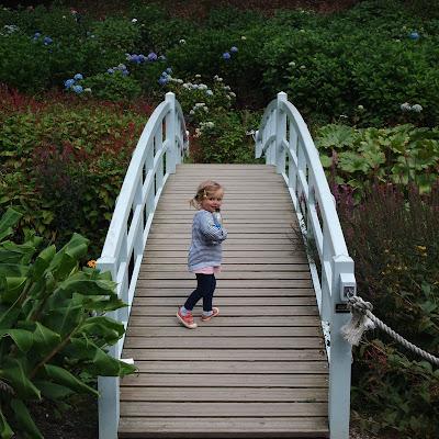 Exploring Trebah Gardens