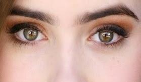 Tips Cara Alami Menebalkan Alis Mata