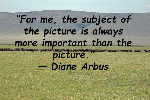 Buy poster of photography quotes