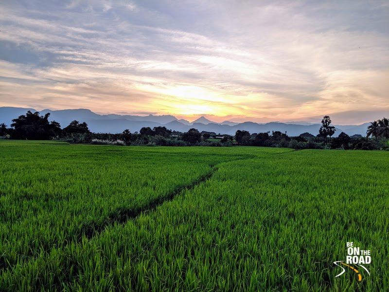 Gorgeous evening landscape at Kallidaikurichi village, Tirunelveli, Tamil Nadu