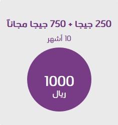 شرح الإشتراك في باقة إنترنت 1000 ريال 250 جيجا من stc الإتصالات السعودية 2019