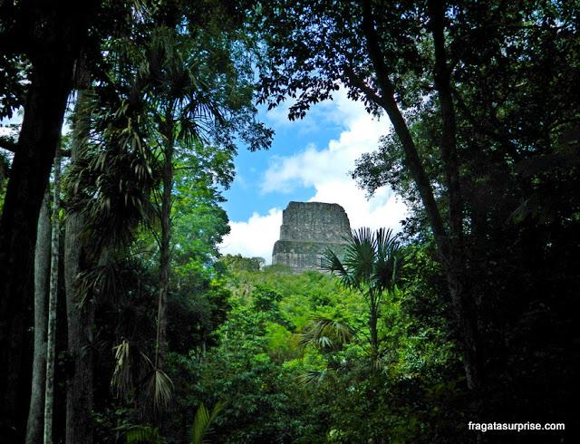 Tikal, Guatemala, Templo do Grande Sacerdote (Templo 3)
