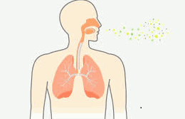 Bacterial can be The reason for respiratory disorder