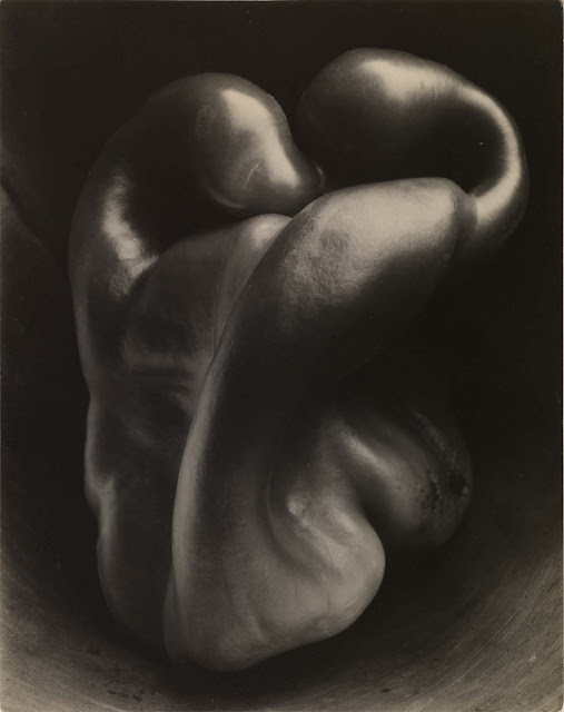 "Edward Weston - ""Pepper no.30"""