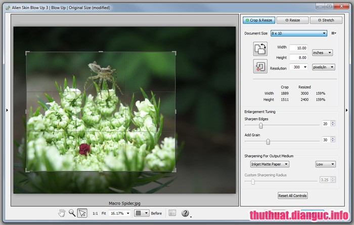 Download Alien Skin Blow Up 3.1.1.188 Full Cr@ck – plugin cho Photoshop