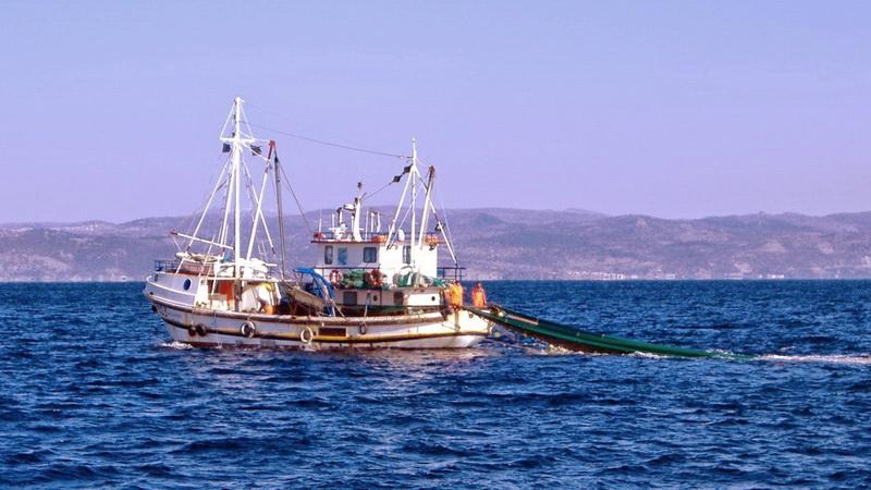 Τουρκία: Υπουργική οδηγία σε ψαράδες να μην μπαίνουν στα ελληνικά χωρικά ύδατα