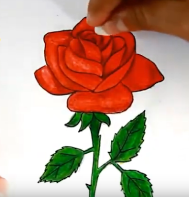 رسم ورد جوري  بطريقة سهلة جدا