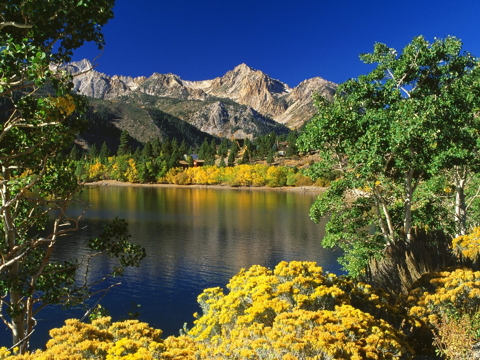 Amazing Photos Of World: Beautiful Natur