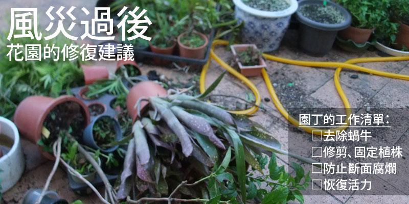 風災過後,花園的防災建議