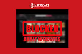 Cara Blokir Situs Negatif