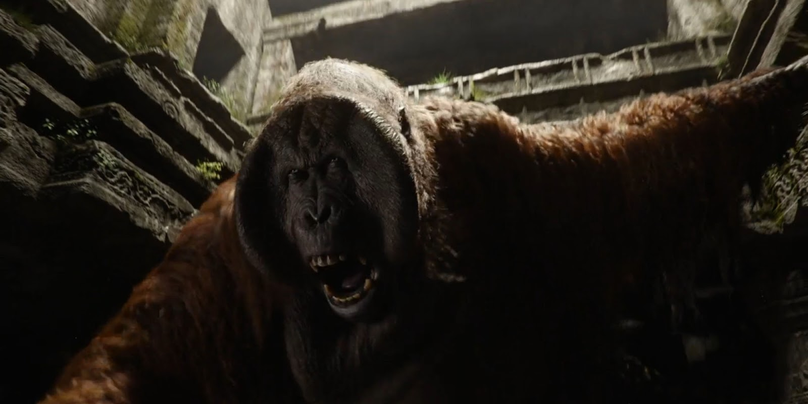 the jungle book review Disney has dusted off another of its classics with a live-action remake of the jungle book but does it pass muster find out at empire online.