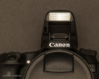 Canon Camera and Photography Training Cape Town