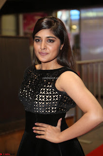 Niveda Thomas Black Sleeveless Cute Dress at 64th Jio Filmfare Awards South 2017 ~  Exclusive 123.JPG