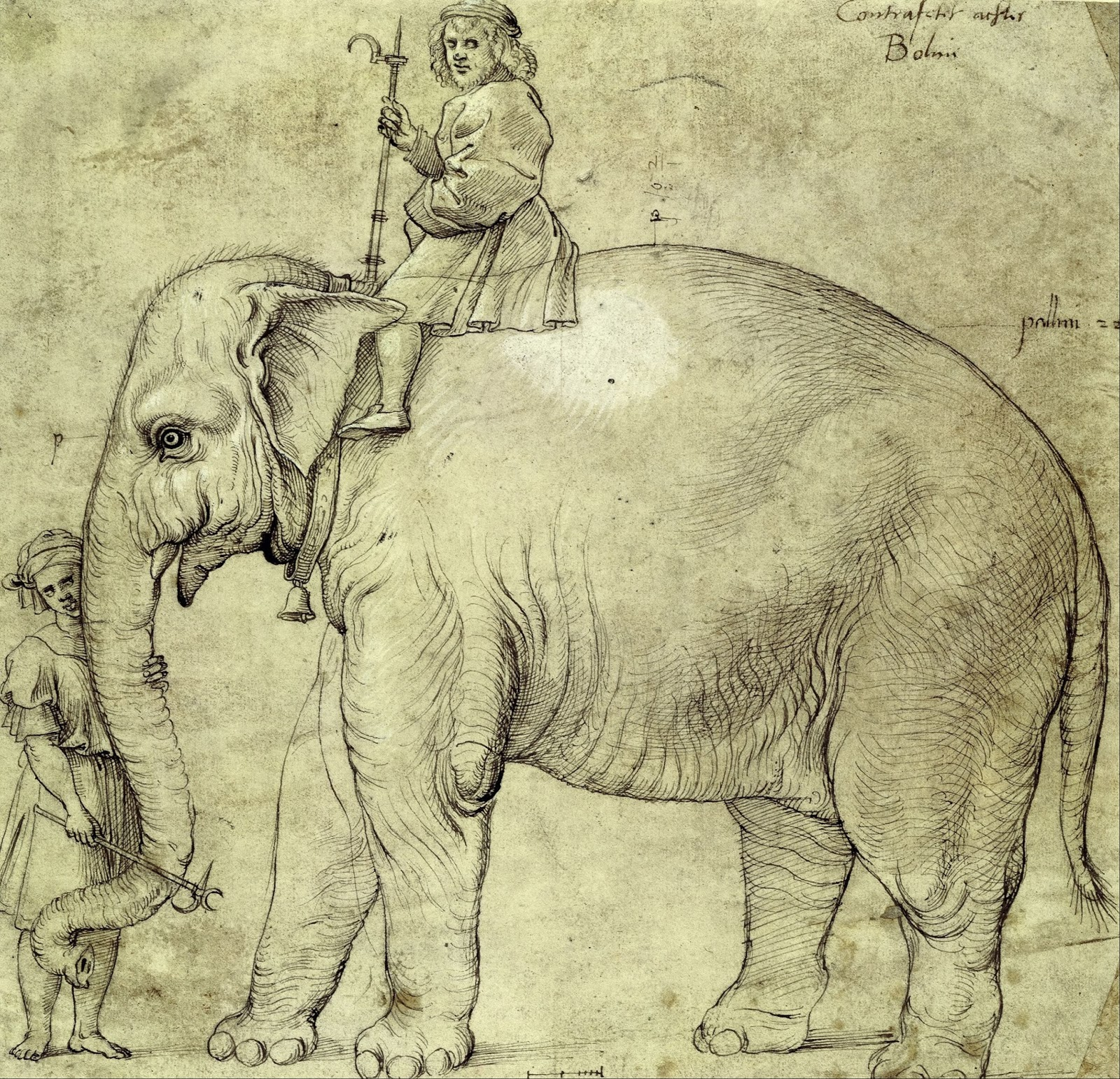 A Pope And An Elephant
