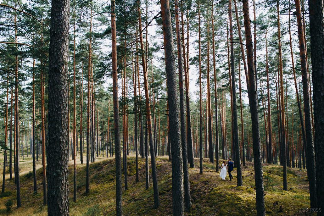 kāzas priežu mežā
