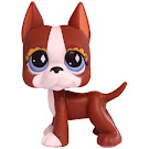 Littlest Pet Shop Gift Set Great Dane (#589) Pet