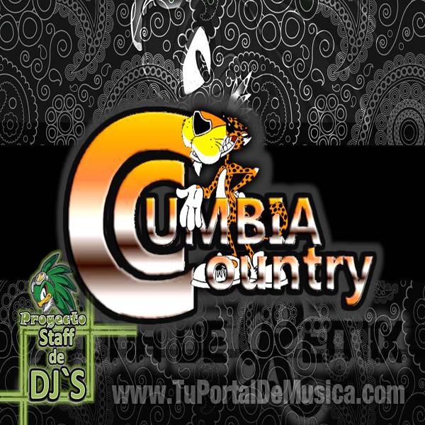 Zona De Remix Cumbia Country (2016)