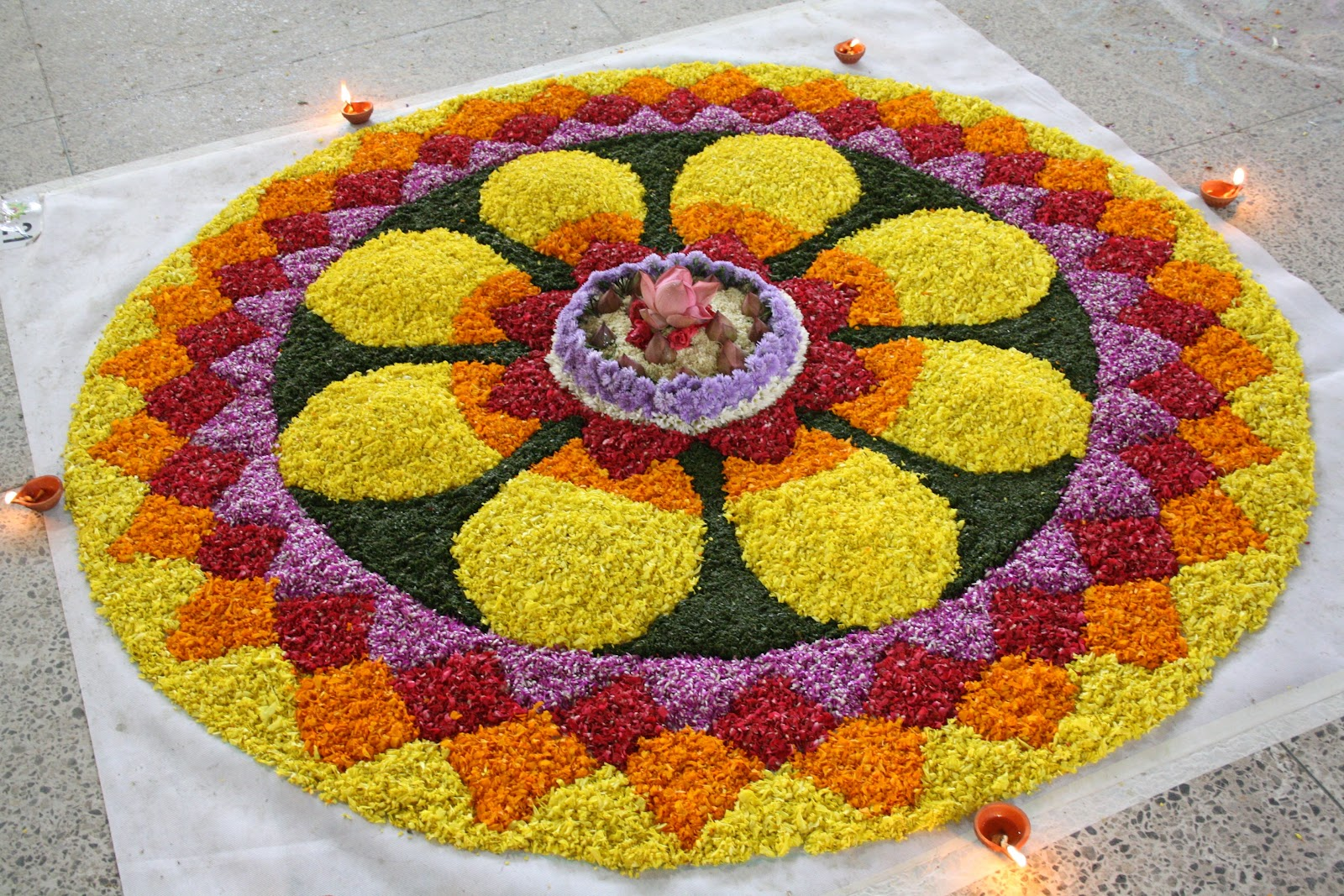 Shutter Treat.: Attappokkalam (Flower Carpet)
