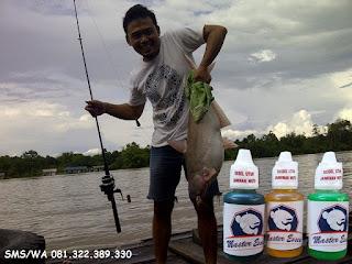 Essen Untuk Umpan Ikan Patin Babon