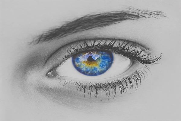Интересные факты о головном мозге человека. Зрение