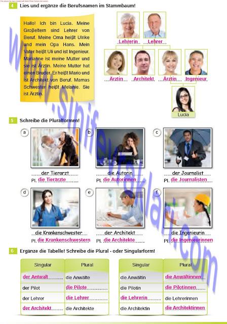 Almanca A1.2 Çıpa Yayınları Çalışma Kitabı Cevapları Sayfa 31