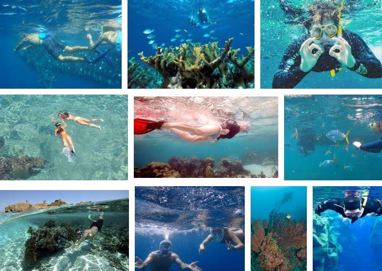 Nuoto e snorkeling: guida all'acquisto di occhialini e maschera subacquea