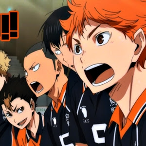 Haikyu! 25/25 Temporada 1 Audio Castellano MEGA