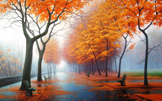 Foggy Autumn Wallpaper Samsung Galaxy Tablets Wallpapers