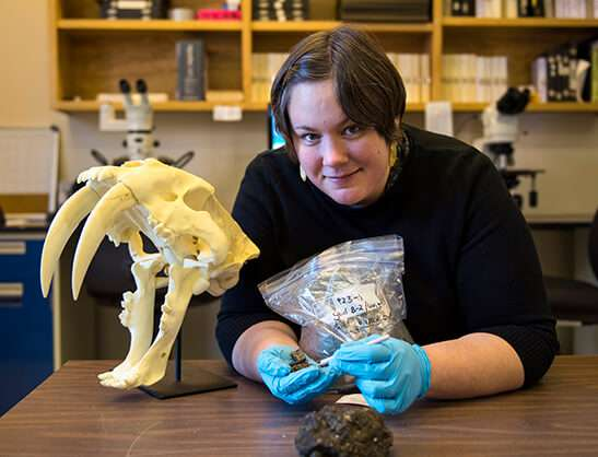 Researcher examines plants encased in tar pits to reconstruct Ice Age ecosystem