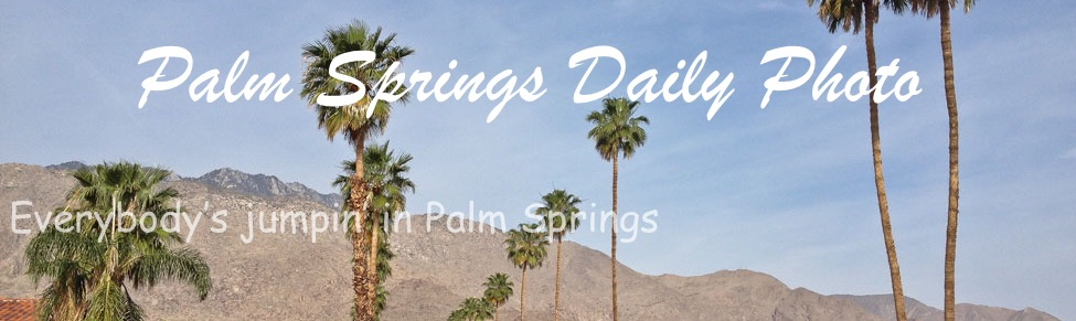 Palm Springs Daily Photo