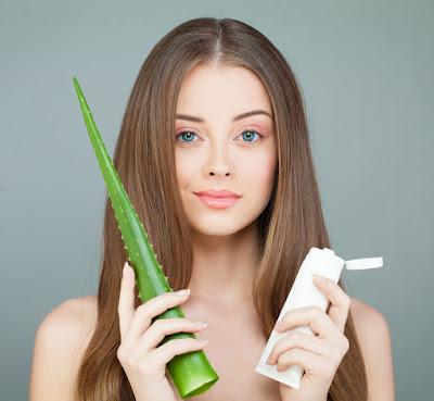 Shampooing d'aloès et de romarin pour assombrir les cheveux et éliminer les cheveux gris!