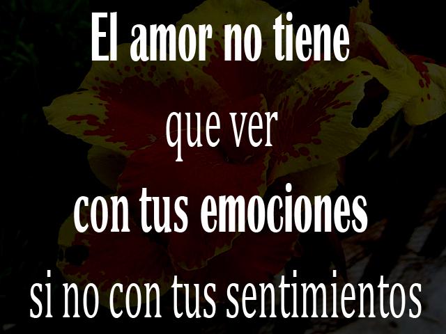 El amor no tiene que ver con tus emociones si no con tus sentimientos
