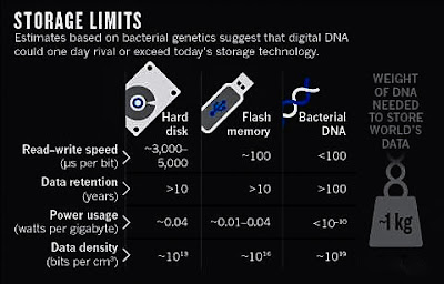 DNA molecules can store information many millions of times more densely than existing technologies for digital storage -- flash drives, hard drives, magnetic and optical media. Those systems also degrade after a few years or decades, while DNA can reliably preserve information for centuries. DNA is best suited for archival applications, rather than instances where files need to be accessed immediately.